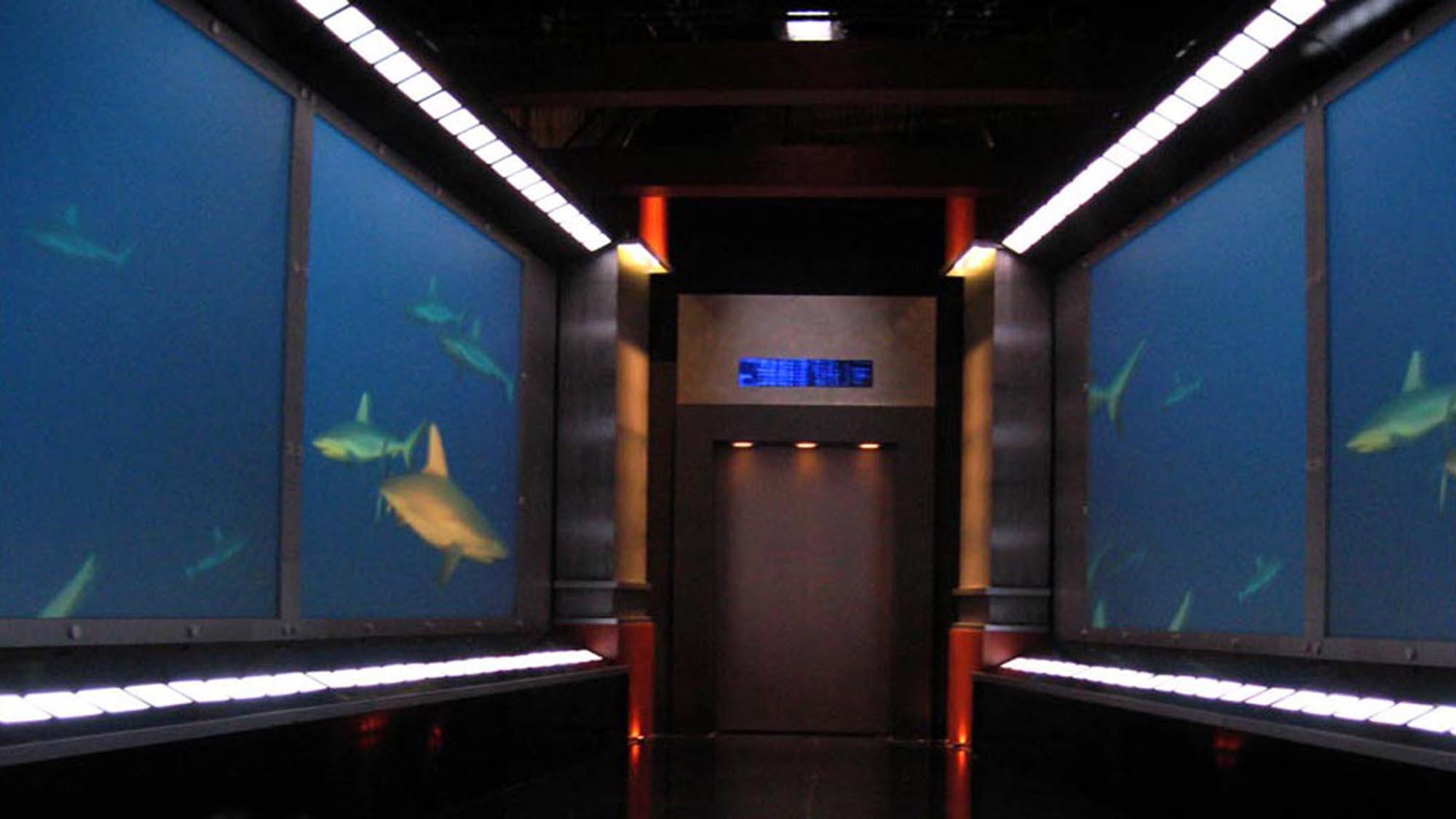 shark-tank-03-sm